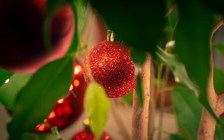 Glittering red Christmas bauble - shot through the leaves Фото со стока