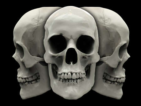 Human skull - front and profile