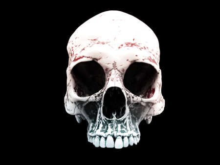 White skull cranium isolated on black background 写真素材