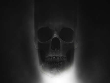 Creepy skull in dense fog