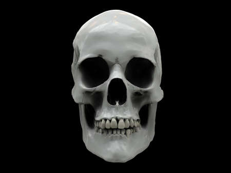 White shiny human skull on a black background