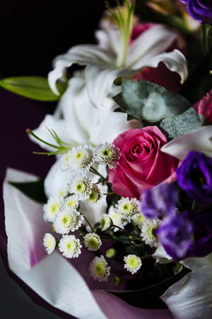 Bouquet of colorful flowers on dark backdrop. Shallow depth of field and close-up. Stock Photo