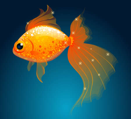 ichthyology: gold fish