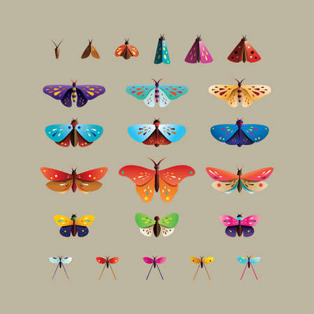 Bugs, Insects. Modern set of icons, symbols and illustrations