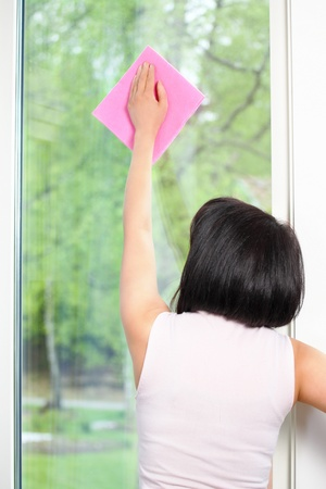 commercial tree service: Cleaning window rear view of housekeeping woman