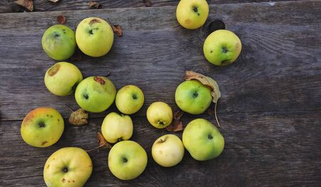apples on a dark wood background