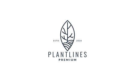 leaf with nature ornament line modern logo vector illustration design