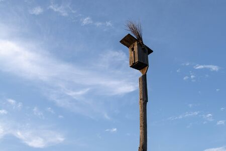 Birdhouse For Birds On A Background Of Blue Sky.