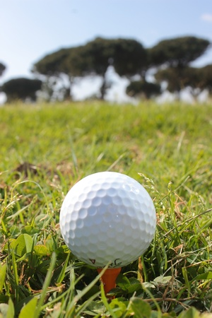 Golf club in Rome, ball, club and landscape photo
