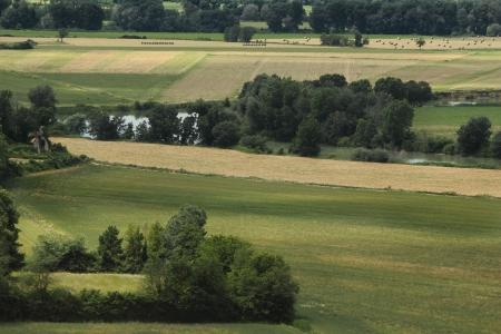 tiber: Campo de trigo en el valle del T?ber, cerca de Roma Foto de archivo