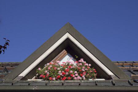 dormer: buhardilla - rof y flor Foto de archivo