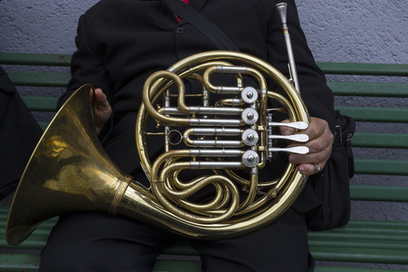 french horn: French horn detail
