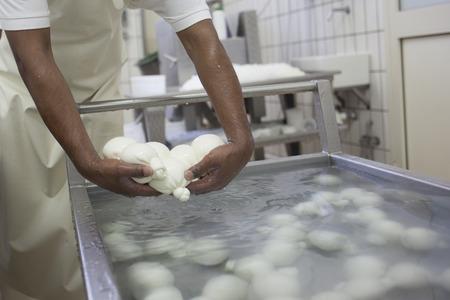 モッツァレラチーズ ファーム 写真素材