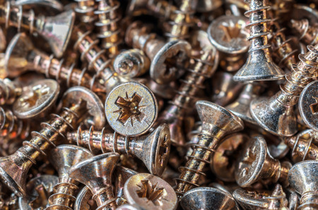 woodscrew: Macro Of A Collection Of Screws 1 Stock Photo