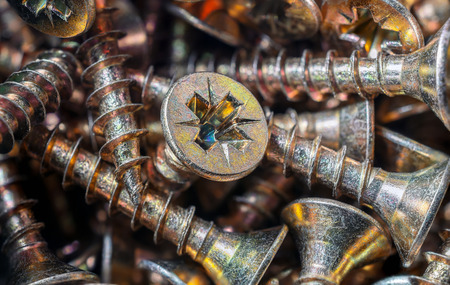woodscrew: Macro Of A Collection Of Screws 2 Stock Photo