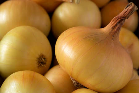 heap: background of heap a yellow bulb onions Stock Photo