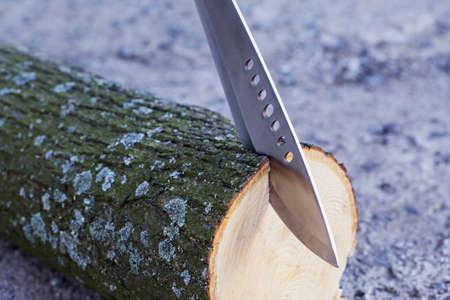 felled: the machete stuck in a tree stump Stock Photo