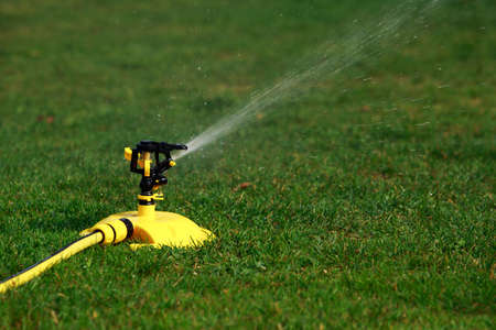 Lawn sprinkler spraying water over green grass Stok Fotoğraf - 65841263