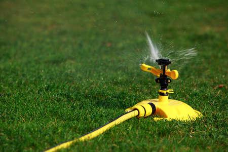 Lawn sprinkler spraying water over green grass Stok Fotoğraf - 65745724