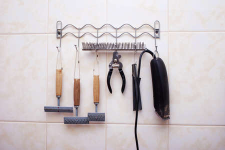 clipper: accessories for the grooming and nail clipper Stock Photo