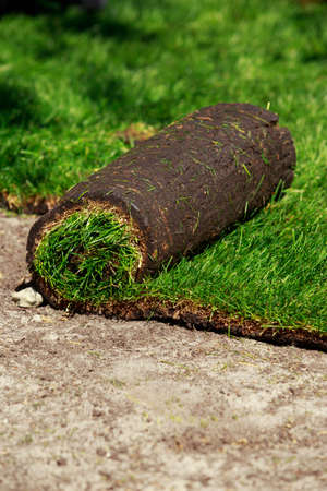 The stacking of roll green lawn grass Stock Photo
