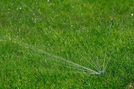 The built-in automatic green grass irrigation system Stok Fotoğraf - 90761511