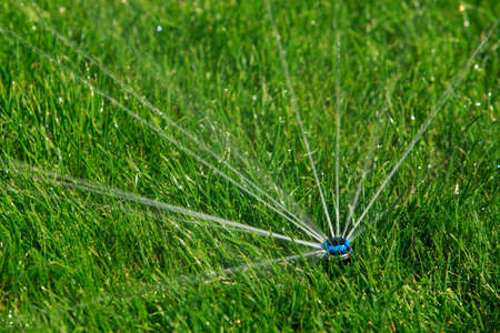 The built-in automatic green grass irrigation system