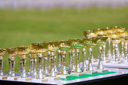 Gilding glittering cups for rewarding winners in competitions