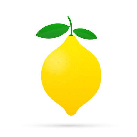 Lemon. Yellow lemon vector stock illustration isolated on white background.