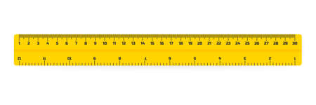 wooden rulers 30 centimeters with shadows isolated on white. Measuring tool. School supplies. Vector stock illustration. Illustration