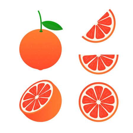 Vector grapefruit. A whole grapefruit and a cut. Vector stock illustration. Vector Illustratie