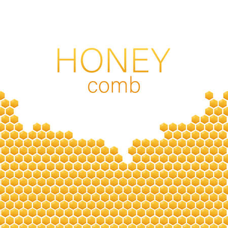 Honeycomb monochrome honey pattern. Vector stock illustration.