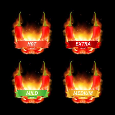 Hot red pepper strength scale indicator with mild, medium, hot and hell positions. Vector stock illustration. Иллюстрация