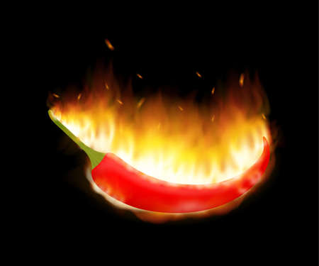 A burning hot spicy red chilli pepper covered in flames. Extra spicy pepper. Vector stock illustration.