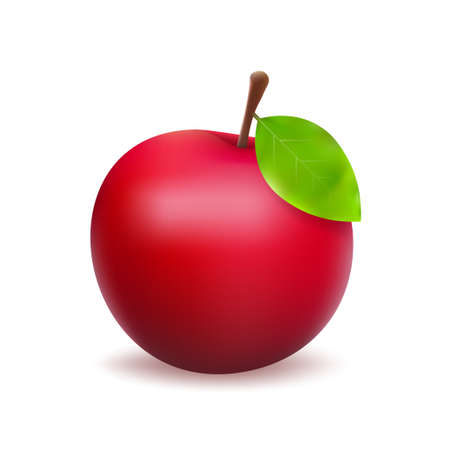Vector stock illustration of detailed big shiny red apple