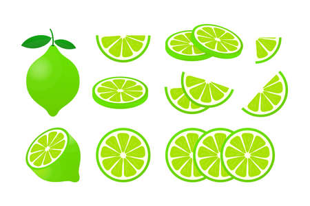 Lime with green leaves, slice citrus isolated on white background. Vector illustration.