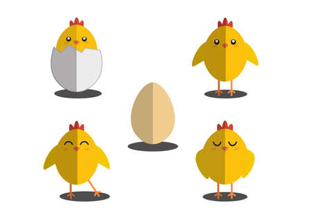 Wallpaper with eggs and chick chick out of four types of eggs. Cute chick Can be utilized in the media.