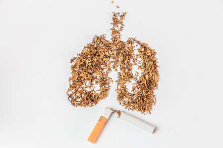 Tobacco pile and cigarette on white background Stock Photo
