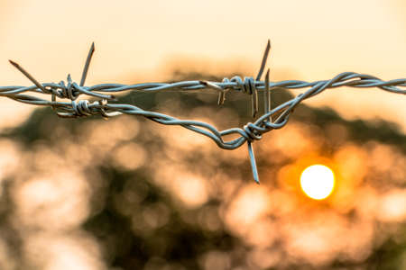 Barbed wire on concrete fence with Twilight sky to feel worrying. Stock Photo