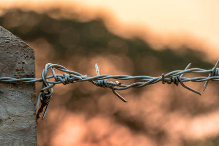 wire fence: Barbed wire on concrete fence with Twilight sky to feel worrying. Stock Photo