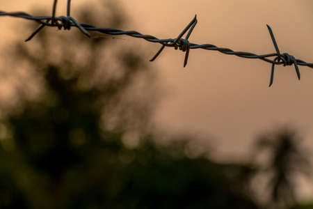 trapped: Barbed wire on concrete fence with Twilight sky to feel worrying. Stock Photo