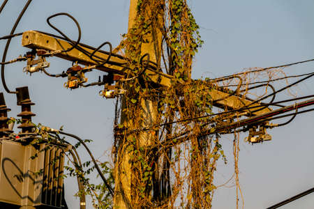 Electric Power lines are not working on a power pole tangled messy in city of Thailand.