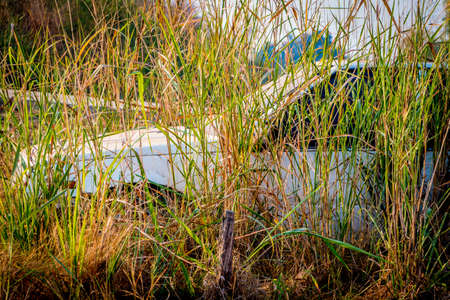 corroded: Abandone Old Cars turned into wrecks deep in swedish forests.