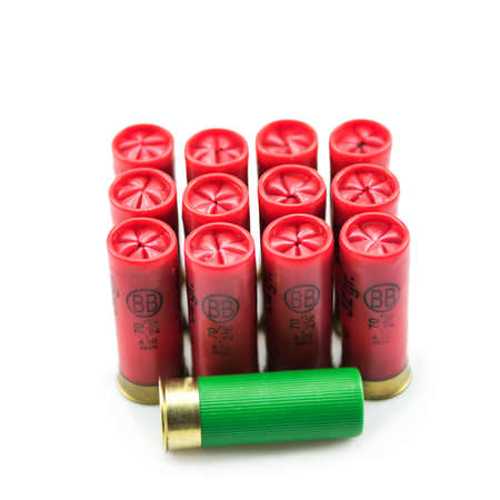 12 gauge shotgun shells isolated on a white background