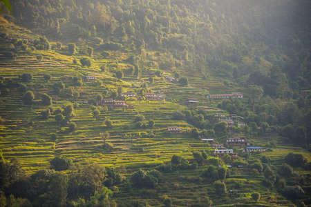 traditonal: Rice terraces in Annapurna conservation area, Nepal. Stock Photo