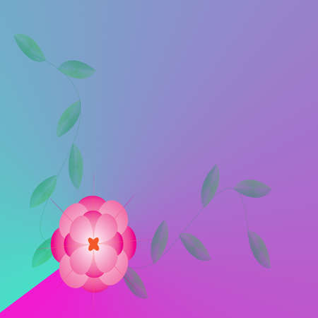Flower of frame on background