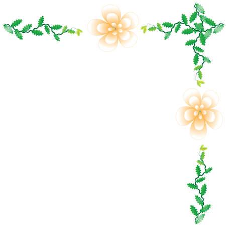 Bloem van het frame op een witte achtergrond