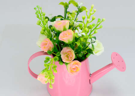 Beautiful flowers in bucket , isolated on white