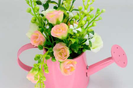 Mooie bloemen in emmer, geïsoleerd op wit