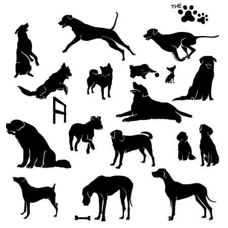 illustrators: dog shadow Illustration
